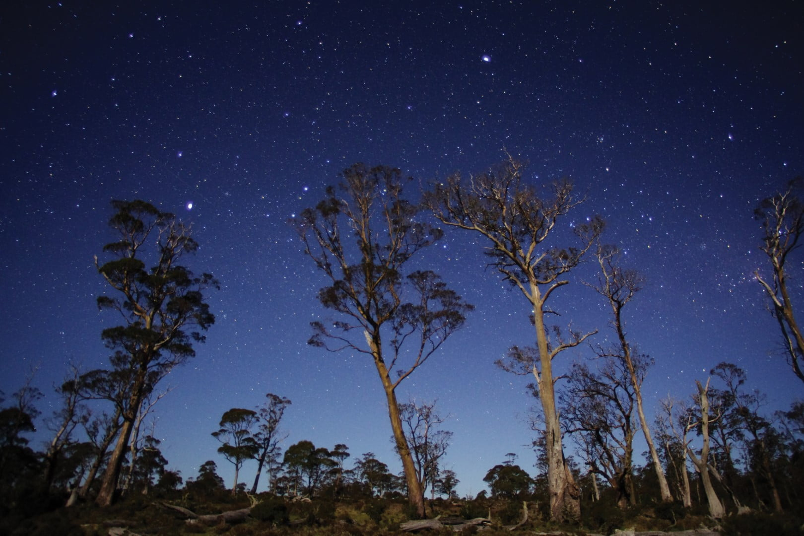 Stars in the Cradle Mountain Lake St Clair National Park