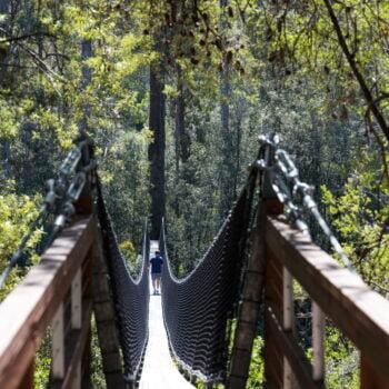 https://toursaroundtasmania.com.au/wp-content/uploads/2021/05/132489-56_Tahune-Adventures-Tasmania-1-350x350.jpg